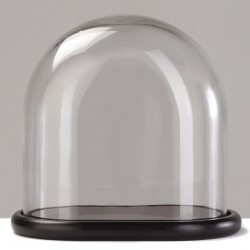 HB-glass-4 dust cover small